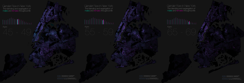 This map of gender segregation shows how New Yorkers live and die