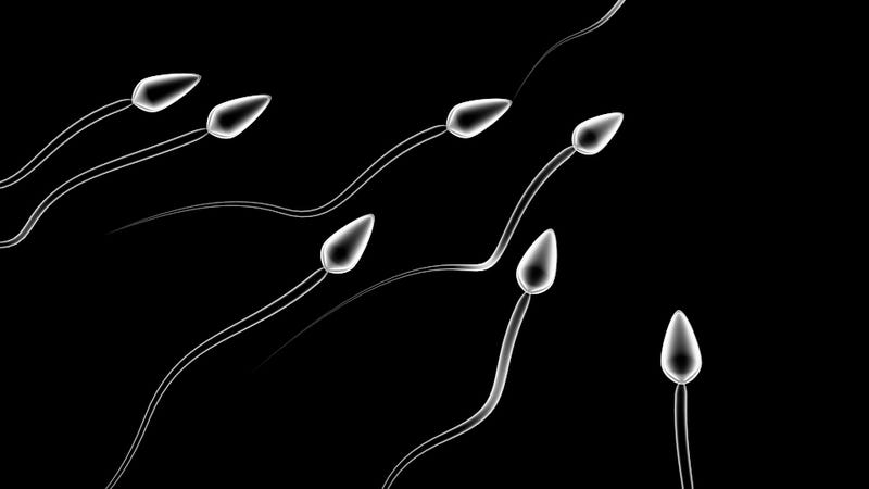 Daring Sperm Smugglers in Palestine Brave Israeli Jails, Implausibility to Get Pregnant