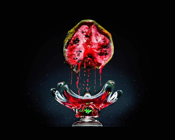 Still-life photos of rotting food are strangely beautiful