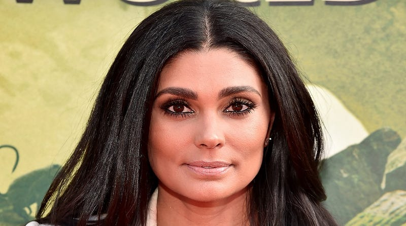 Is Fashion Designer Rachel Roy 'Becky With the Good Hair' from Beyoncé's Lemonade?