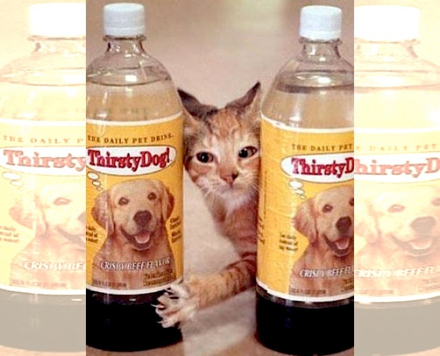 The Strange History of Bottled Drinks Marketed to Dogs and Cats