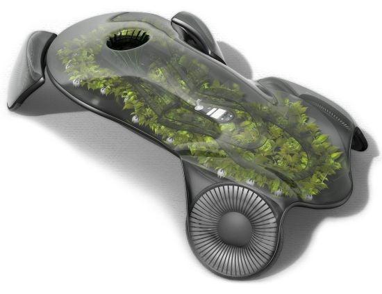 Finally, a True Green Car
