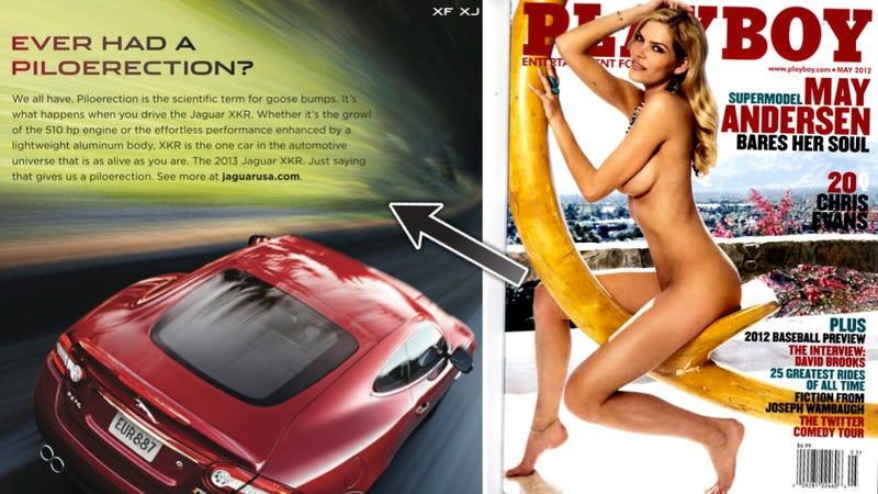 Jaguar Reads Playboy, Gets A 'Piloerection'
