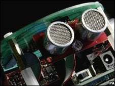 Rat Brains Make the Best CPUs