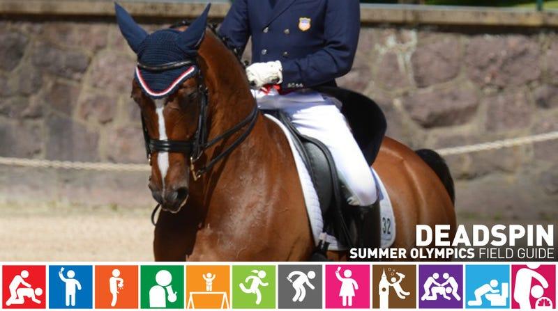 Olympic Field Guide: Rafalca, Ann Romney's Poor Horse