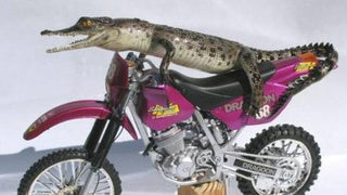 Reflections on a Baby Crocodile Driving a Pink Motorcycle
