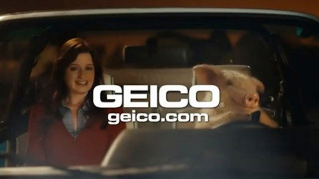 Homophobic Family Values Group Accuses GEICO Pig Commercials of Promoting Bestiality