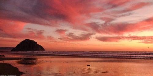Take Awesome Sunset Photographs