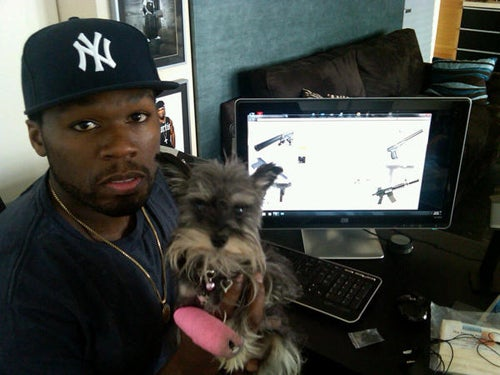 Meet 50 Cent's Dog Oprah Winfrey
