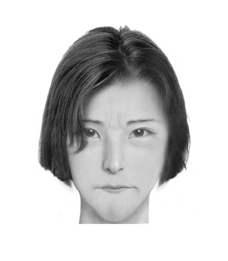 Police composite software makes realistic portraits of literary characters