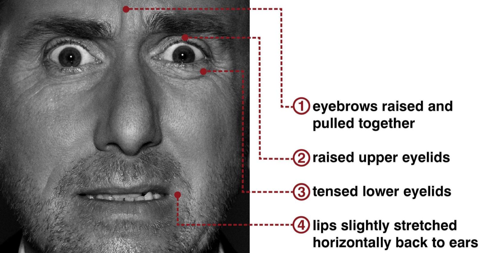 Прибили половые губы онлайн 17 фотография