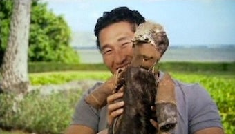 """Lost DVD Extra: All Your """"Squirrel Baby"""" Questions Answered"""