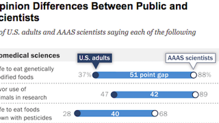 America Likes Science. It Does Not Like Scientists' Find