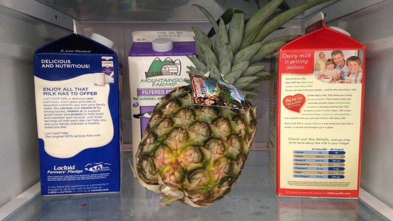 Is That a Pineapple in Your Refrigerator or Are You Just Happy To See Me