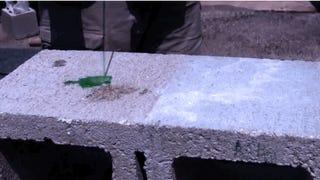 La solución contra los que orinan en la calle: paredes hidrofóbicas