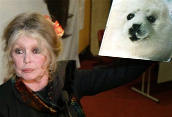Bardot To Big O: Save The Seals
