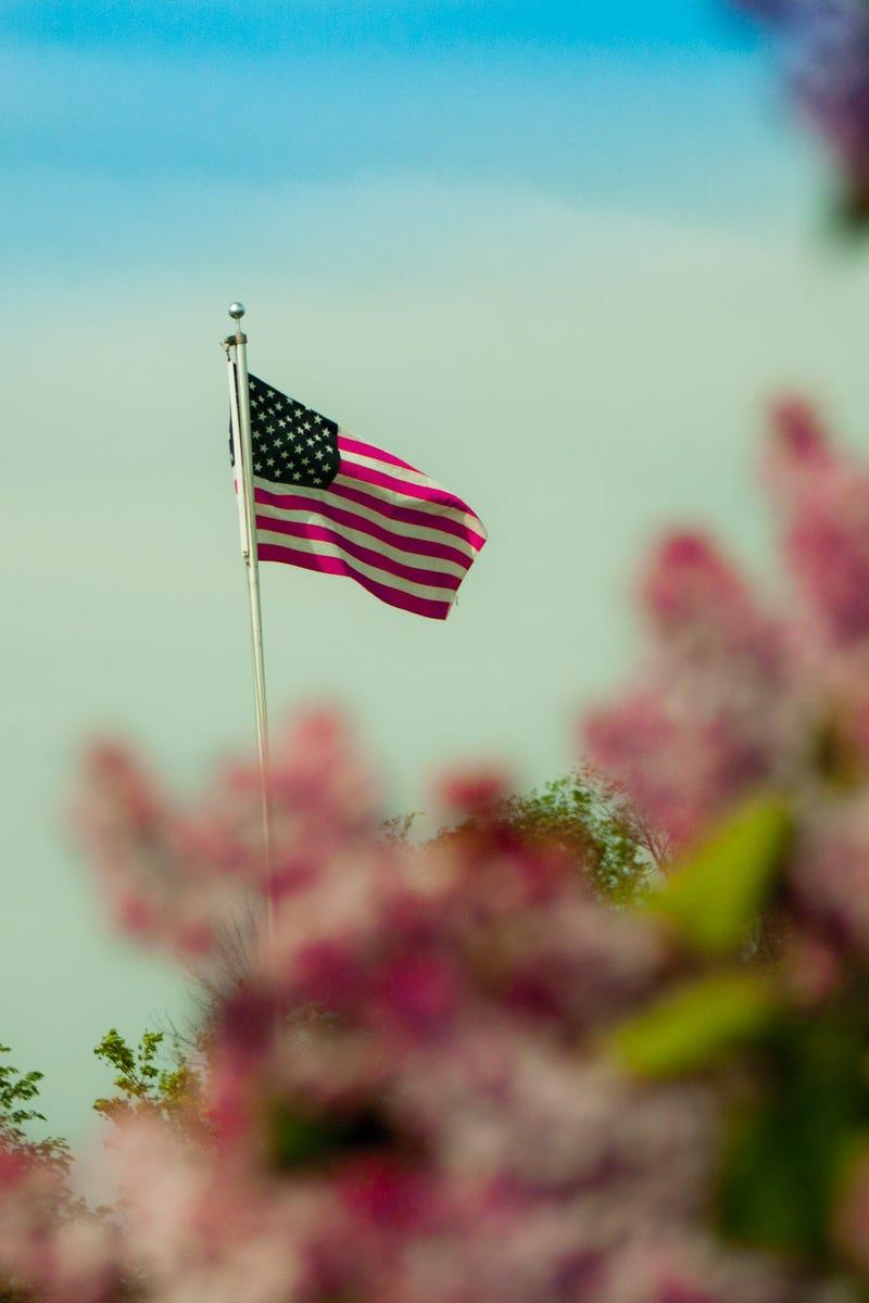 13 Photos Of Memorial Day