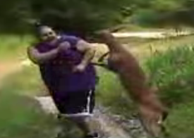Deer Commits Possible Hate Crime Against Fat Man