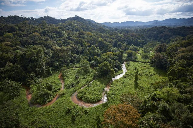 Found: A Legendary Lost Civilization Buried In the Honduran Rainforest