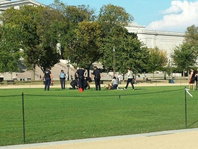 Man Reportedly Sets Self on Fire at D.C.'s National Mall