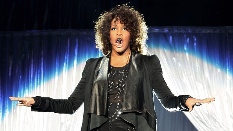 Whitney Houston's Death Left Her Family Broke Enough to Turn to Reality TV, Tell-All Books