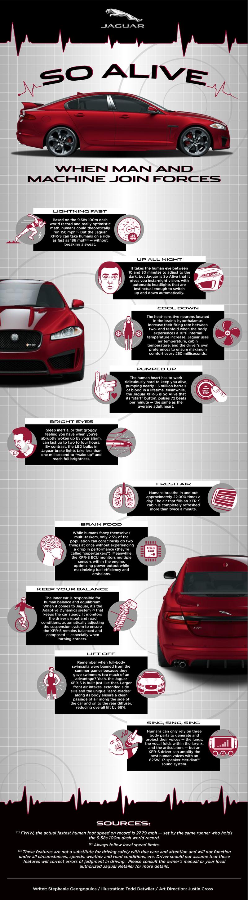 How Do Your Reflexes Measure Up Against a Jaguar Car?