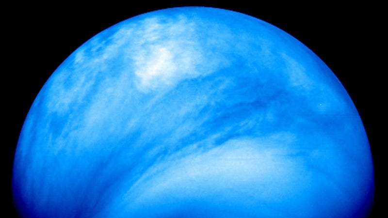 Russian scientist claims to have discovered life on Venus