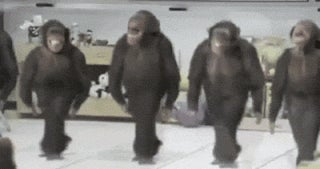 Let Me Be Your Dancing Monkey*