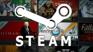 We Didn't Always Love Steam