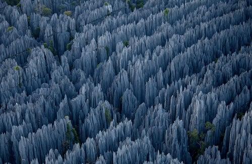 The bizarre limestone spires of Madagascar
