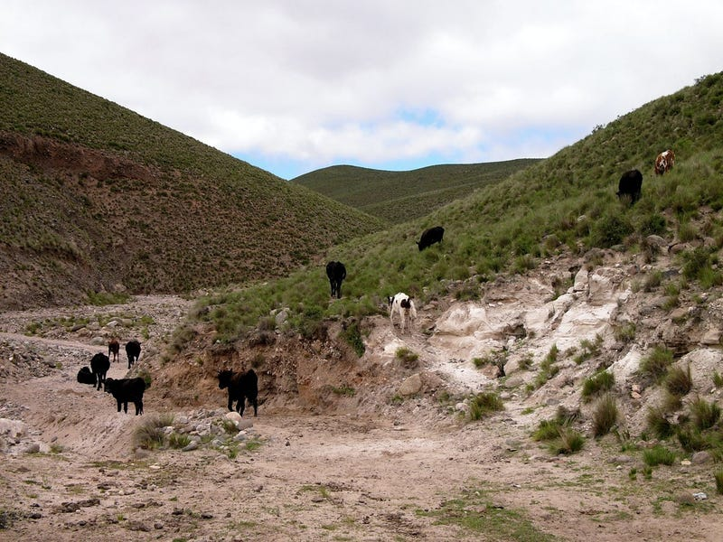 Drive The High Desert Acid Trip Highway