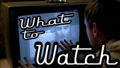 Live-Action Aqua Teen Hunger Force Debuts