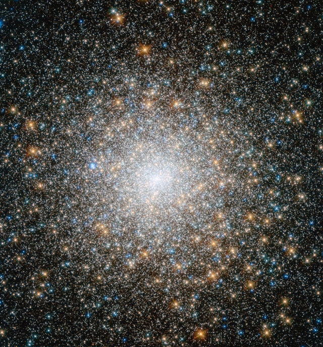 A spectacular shot of one of the densest star clusters ever discovered