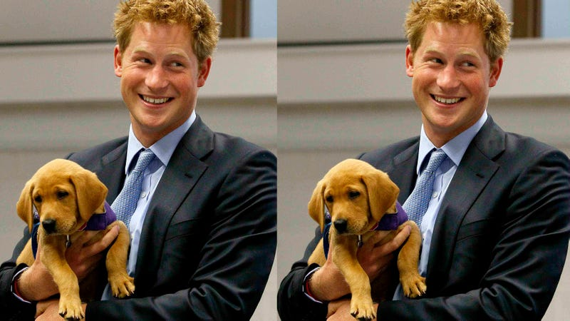 Prince Harry Is Coming Back to America. Kindly Do Not Photograph His Penis This Time.