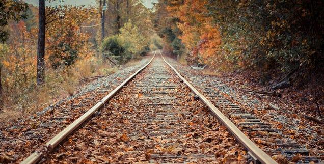 Así quitan las hojas de las vías de tren en Holanda: con láser