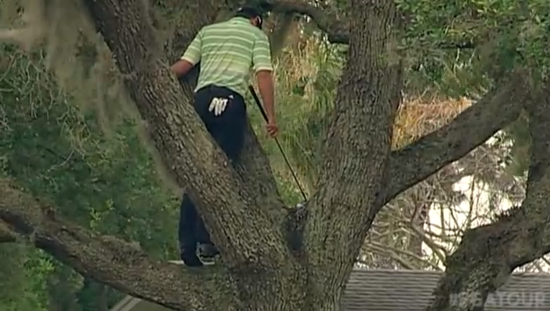 Sergio Garcia Just Climbed Into A Tree Like A Monkey And Hit A One-Handed, Backwards, No-Look Shot, And That Shit Really Worked