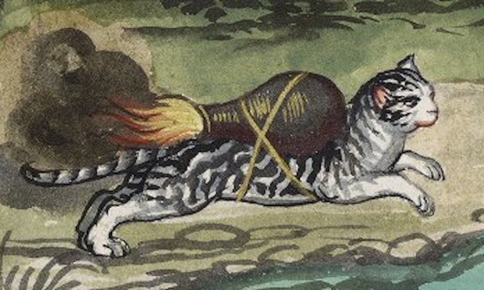 Rocket Cats of the 16th Century