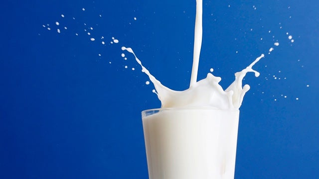 Is There Anything That Milk Cannot Do?