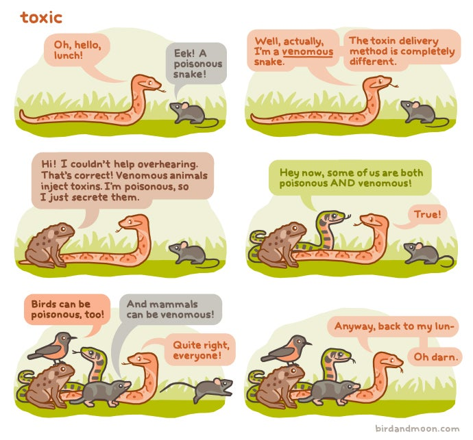 """Venomous"" vs ""Poisonous,"" Explained With Adorable Talking Animals"