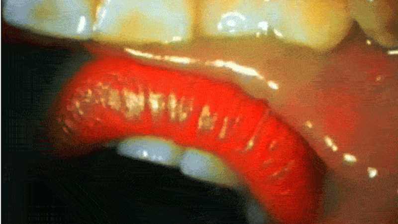 A Kiss Filmed From Inside A Mouth Is Totally Effing Gross Looking