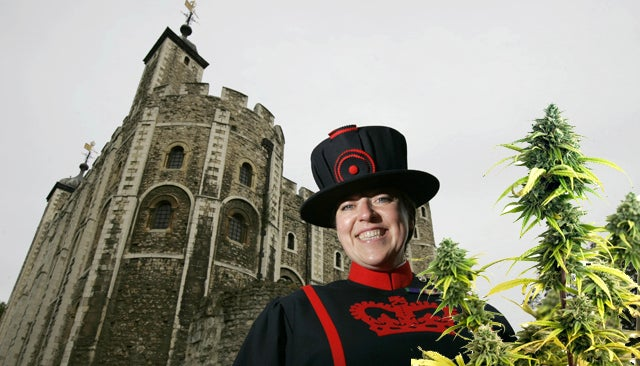 The Tower of London Is an Unruly Weed Farm