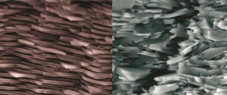 This Synthetic Mother of Pearl Is Ten Times Tougher Than Ceramics