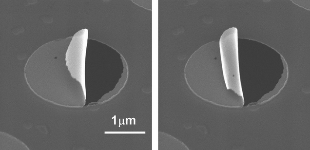 Scientists Can Now Make Nanoparticle Sheets That Curl Right Up