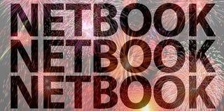 Rumor: Netbook Debate Ends With A Quiet Settlement?