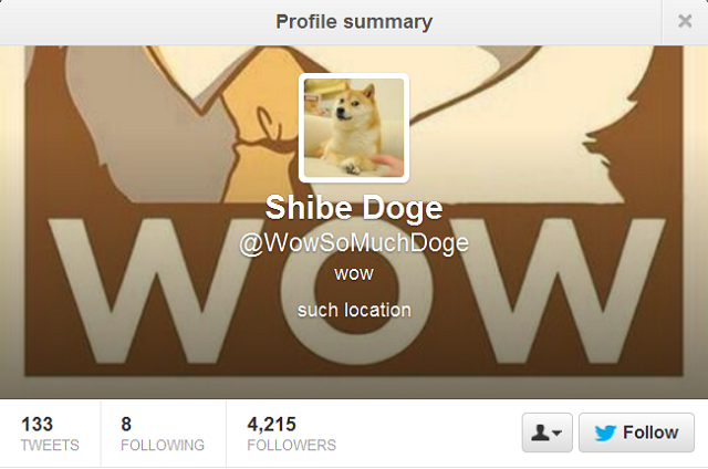Top 10 Twitter Doges Much Followed