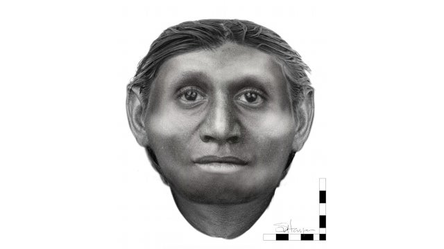 New interpretation of extinct 'Hobbit' species reveals a human-like face