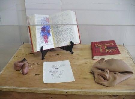"James Franco's ""Art"" Includes Penis-Noses, Masks & A Dead Cat"