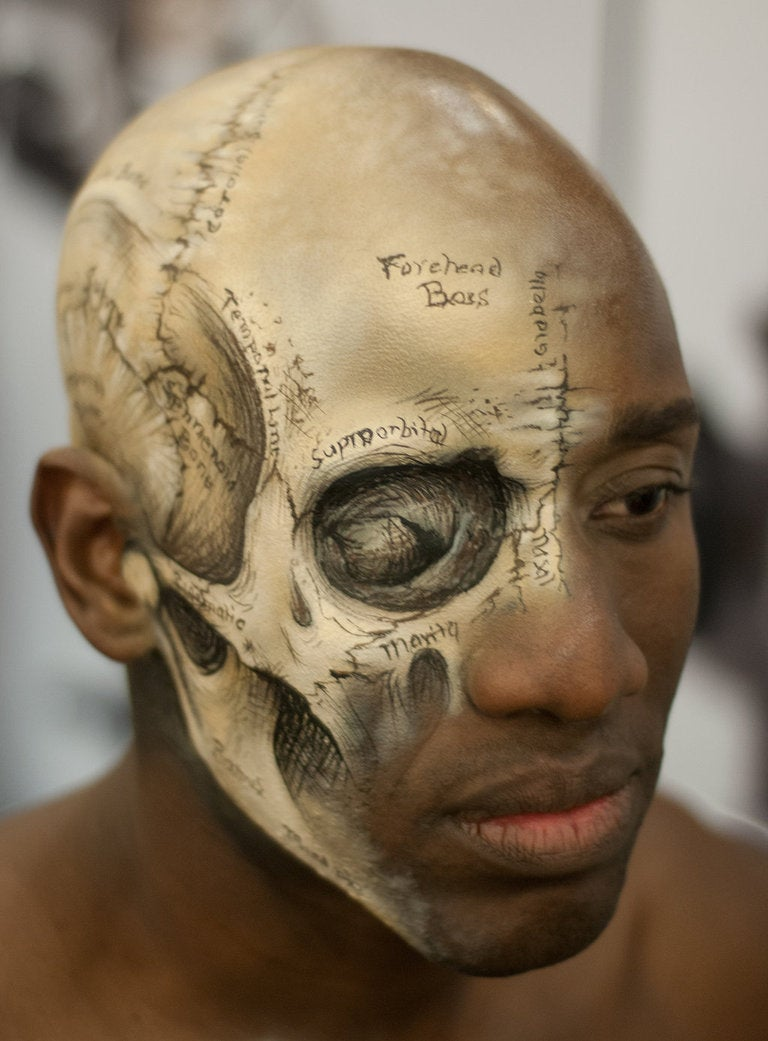 Lovely medical illustration of the human skull painted directly on a human head