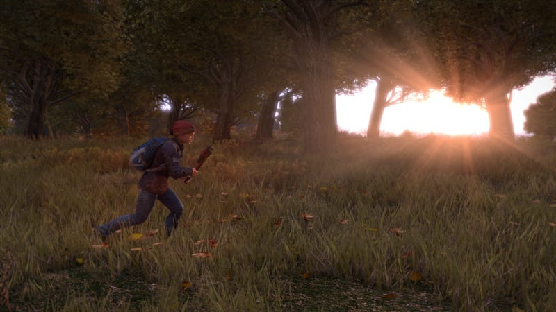 Part of What Makes DayZ Great Is That It Isn't Finished