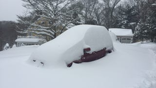 There's a Forester under there